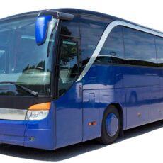 автобусы в Израиле